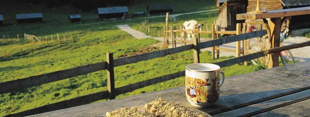 Steirerkas-Kulinarium auf der Viehbergalm