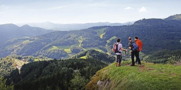 Panoramaausblick auf dem Bauernkopf, über Bad Peterstal-Griesbach
