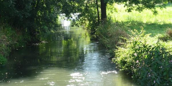 Das Flüsschen Abens in Abensberg im Hopfenland Hallertau