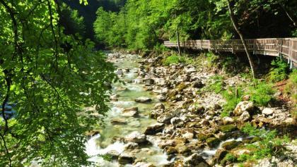 Buchensteig am Reichramingbach im Bereich des Wasserboden
