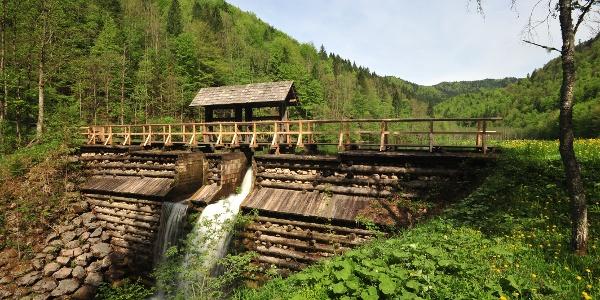 Die Schleifenbachklause wurde vom Nationalpark Kalkalpen und dem Verein Eisenstraße reaktiviert, nachdem ein Hochwasser die Klause zerstört hat und der Borsee zu verlanden drohte