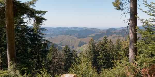 Bad Peterstal-Griesbach, Wanderung zum Buchkopfturm: Blick auf Oppenau-Maisach