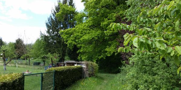 Der Pfad entlang der Gärten zu Beginn der Tour