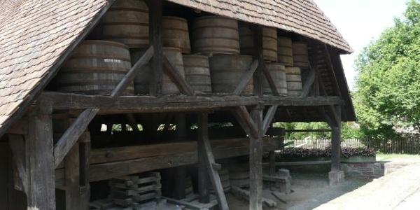 Kelter in Ellmendingen