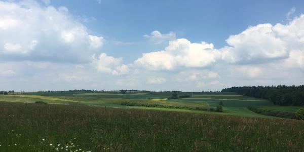 Blick über die Felder bei Gärtringen