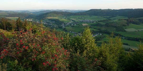 Blick über Wenholthausen