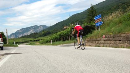 The Avisiane hills. Cycling towards San Michele all'Adige