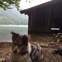 Lost place am Alpsee