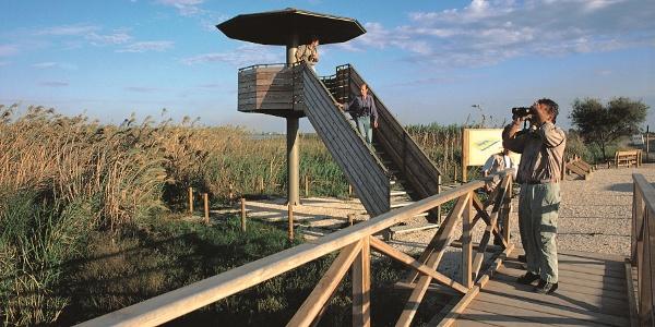 Aussichtsplatform im Naturpark Delta de l`Ebre