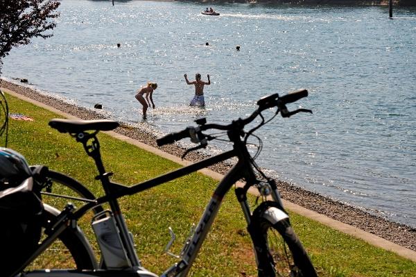 Erfrischendes Bad im Rhein