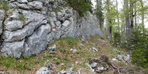 Klagemauer in Wildalpen