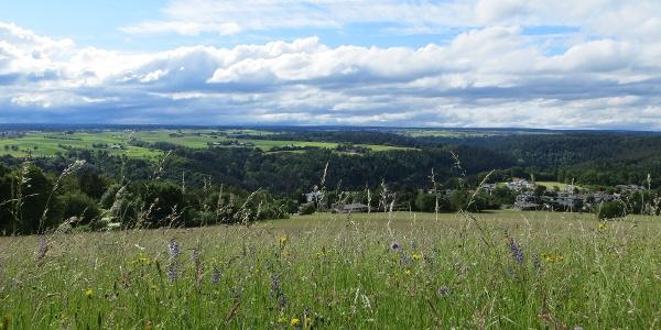 Herrliche Landschaft auf der AugenBlick-Runde Wildberg