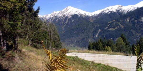 Blick zum Gamskarkogel auf der anderen Talseite