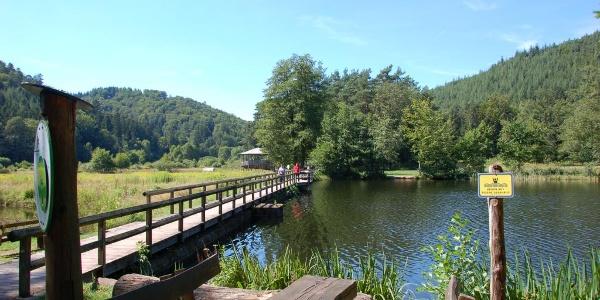 Brücke am Spießwoog