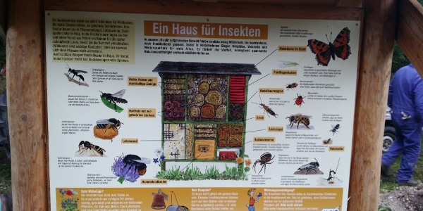 Murscher Eselsche Insektenhotel