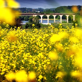 Viadukt am Obersee