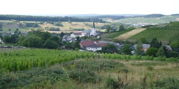 Krettnach umgeben von Weinbergen