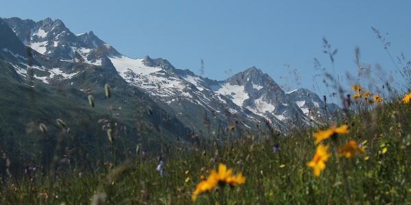 Piz Gannaretsch im Val Nalp