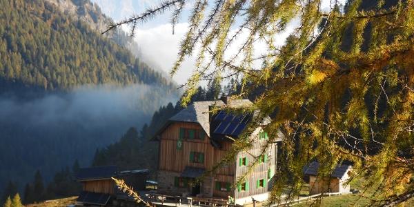Hochweißsteinhaus im Herbst