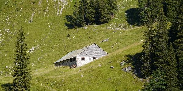 Die Eck-Alpe