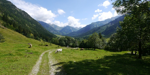 Blick aufs Hintersteiner Tal
