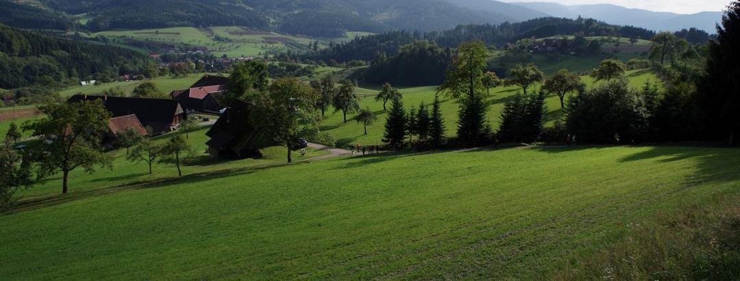 Blick auf das vordere Hinterhambachtal oberhalb vom Oberburehof