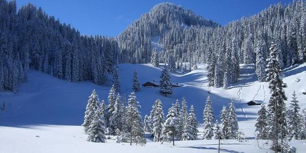 Schneeschuhwanderung Laber - an der Soila-Alm