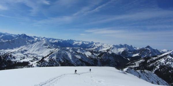 Skitour Hochblasse - kurz vor dem Gipfel