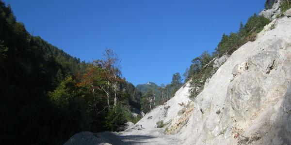 Weg durch den Gratschenitzengraben