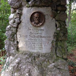 Josef Schaffhausen