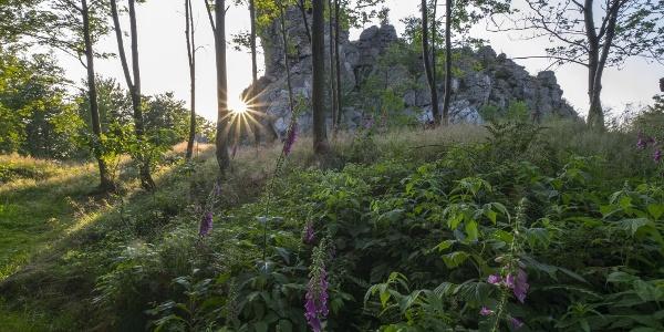 die Bruchhauser Steine am Rothaarsteig ( Foto Kappest)