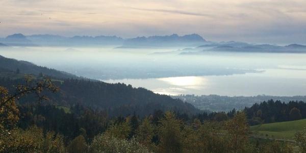 Herbstblick vom Bildstock in Möggers auf Bregenz, Bodensee und Säntis