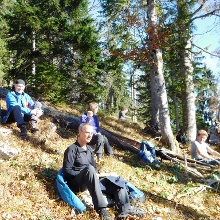 Rast im Bergwald