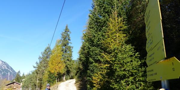 Von Vordersteinberg beginnt unsere heutige Bergtour auf den Guffert.