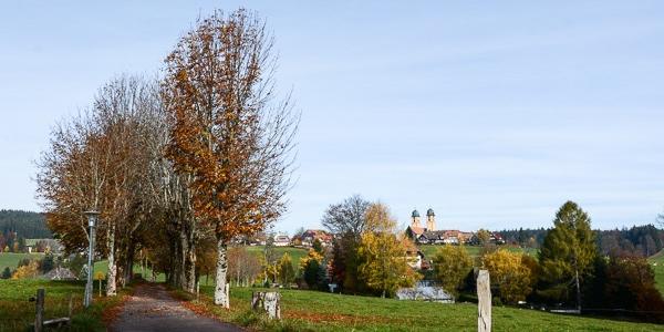 Blick von der Ohmenkapelle in Richtung St. Märgen
