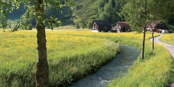 Weg der Schoepfung idyllischer Bauernhof auf dem Weg ins Muotathal