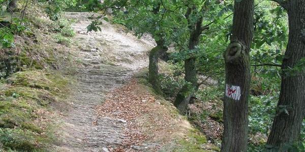 Baedeckers Felsenpfad