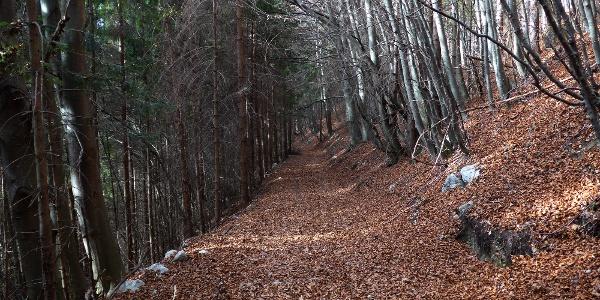 Auf dem Abstiegsweg