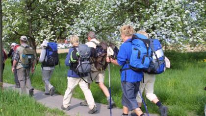Jakobspilgern in Gruppen