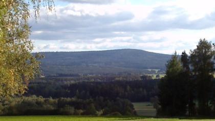 Blick zur Steinwald Platte