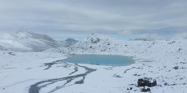 Plateau Rosa, Skigebiet