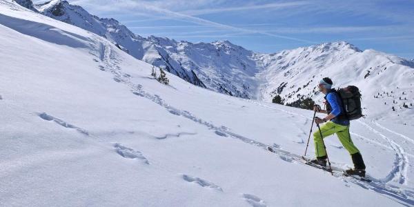 Schafsiedel, Anstieg über den Westrücken, Blick in den Frommgrund
