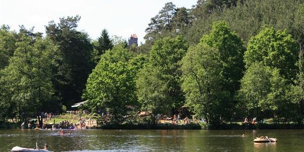 Seehofweiher bei Erlenbach 1