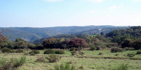 Panoramablick auf Vogelsang