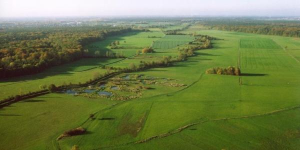 Luftbild der Saalbachniederung