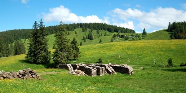 Krunkelbachtal: Am Wiesenhang liegt die Krunkelbach-Hütte. Foto: Heike Budig