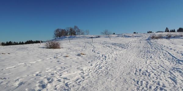 Winterwanderweg bei der Pfarralpe