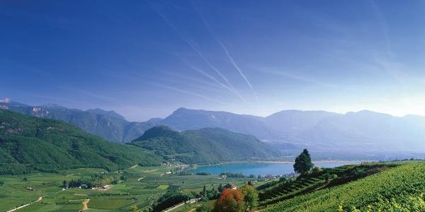 Weinradroute Mitte, Wein & Rad: Weißburgunder und Kalterersee