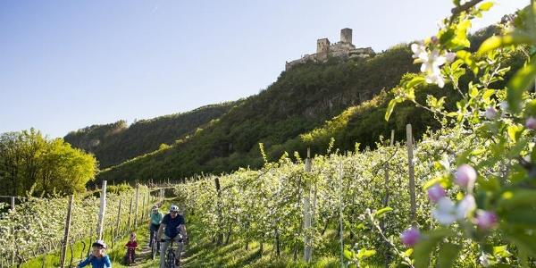 Castello di Appiano a Missiano/Appiano