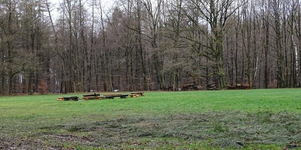 Zeltplatz Forsthaus Halt Wiese